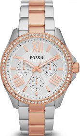 Fossil Women's Cecile Two-Tone Stainless-Steel Quartz Watch with White Dial AM4496