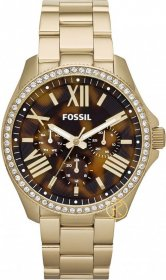 Fossil Women's Cecile Gold-Tone Stainless Steel Bracelet Watch AM4498